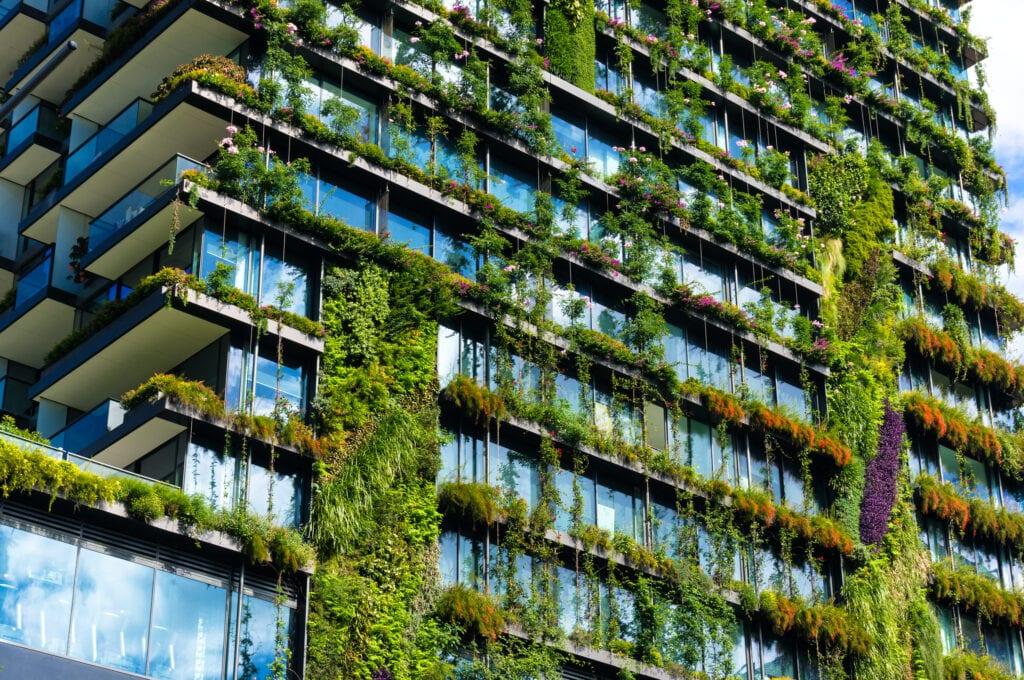 zielona miasta